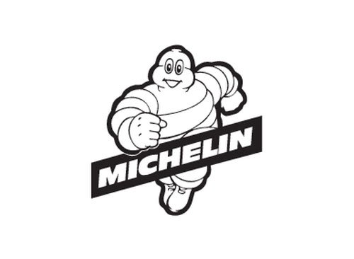 Michelin Tires Case Study