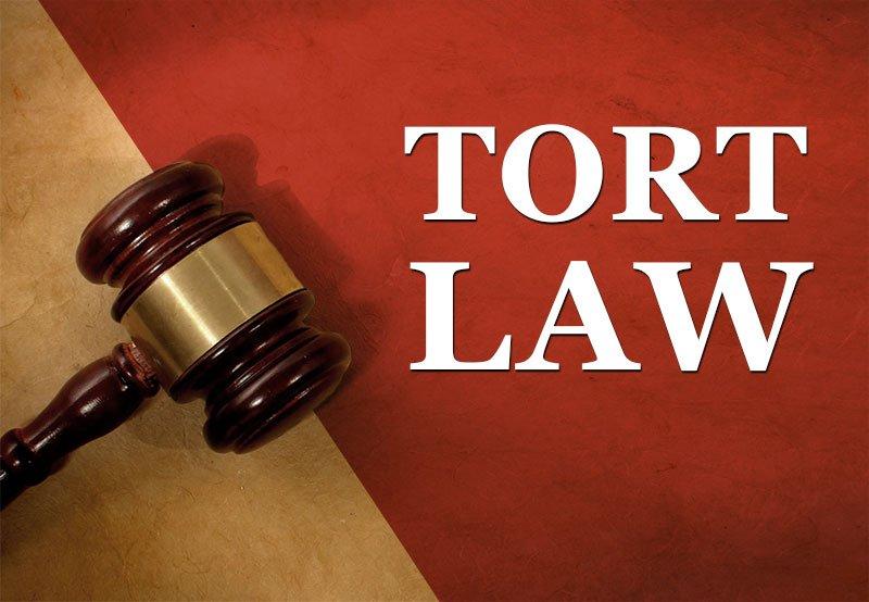 Tort Law Case Study