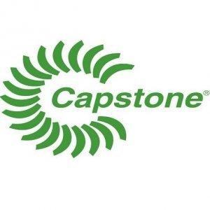 Capstone Turbin Case Study